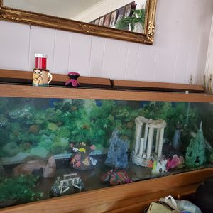 Fish tank for Sale in Temple, TX