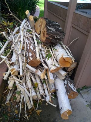 FREE pile of Birch wood , truck full for Sale in Chino Hills, CA