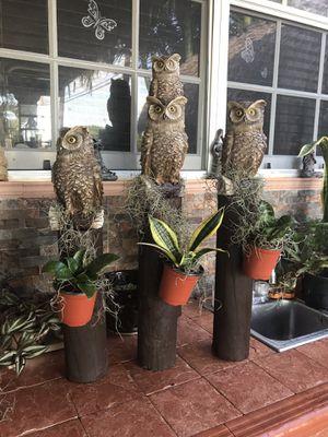 OWL 🦉 DECOR for Sale in Hialeah, FL