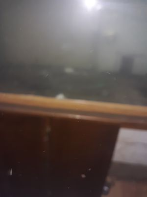 Fish Tank 100gal for Sale in Lubbock, TX