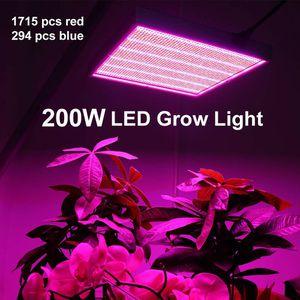 """Flowering Light 12""""x12"""" for Sale in Bradenton, FL"""