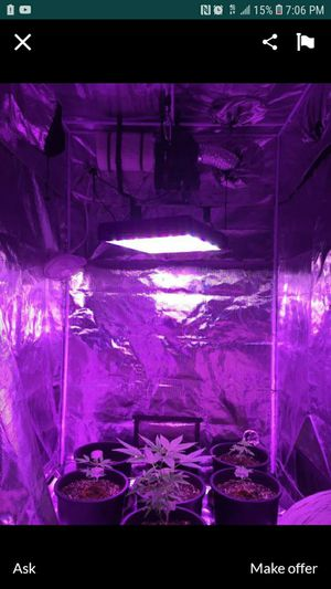 Complete grow set. for Sale in Las Vegas, NV