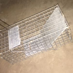 Small rodent trap 30 for Sale in Fresno, CA