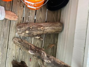 Driftwood for Sale in Franconia, VA