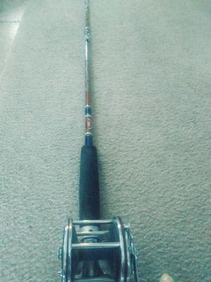 Penn custom power stick fishing rod/ penn sepcial senator 112h reel for Sale in Hayward, CA