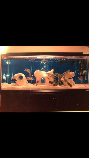 OCEANIC 75 GALLON AQUARIUM WITH STAND for Sale in Round Rock, TX