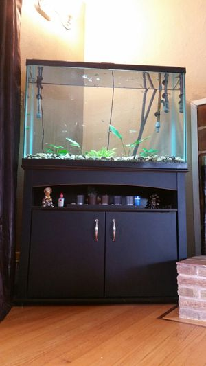 fish tank 45 gallons with stand for Sale in Portland, OR