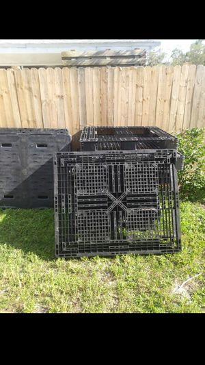 Plastic palletts for Sale in Winter Haven, FL