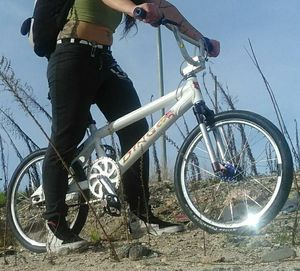 STOLEN! DINGO WARPT BMX RACING BIKE. PLEASE HELP for Sale in Huntington Beach, CA