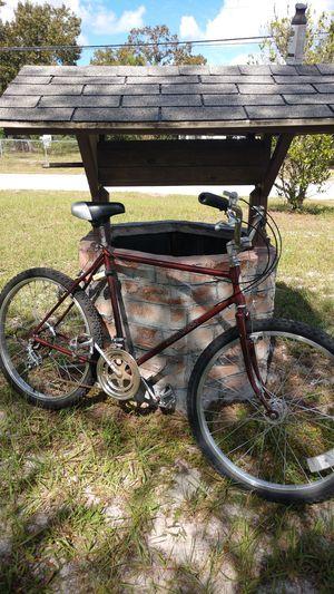 Schwinn mountain bike for Sale in Tampa, FL