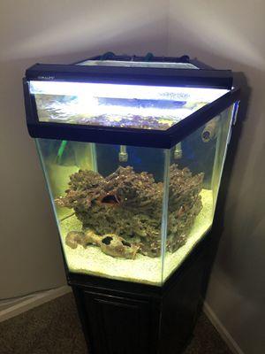 Saltwater aquarium for Sale in Nashville, TN
