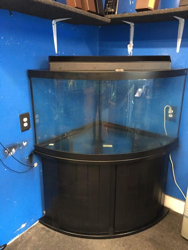 92 Gallon Corner Bowfront Aquarium Fish Tank Complete 700 For Sale
