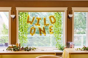 Wild ONE party supplies/kit for Sale in Gig Harbor, WA