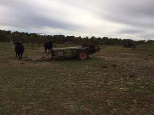 New Idea 12A manure spreader for Sale in Mount Gilead, OH
