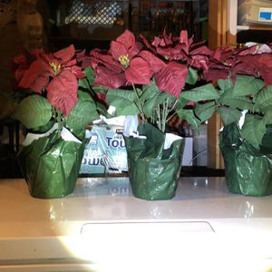 Christmas Pointsetta Plants (fake) for Sale in Highland, CA