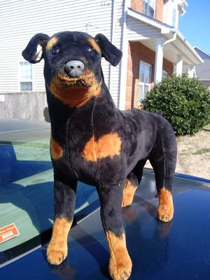 Real life size dog for Sale in Nashville, TN