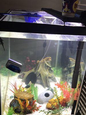 52 Gallon fish tank with decor! for Sale in Tampa, FL