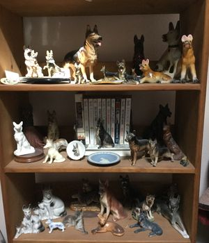 German Shepherd Collection for Sale in Bremerton, WA