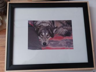 9x11 Picture Frame for Sale in Colorado Springs,  CO