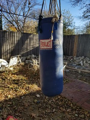 Everlast Punching Bag- Blue for Sale in Dallas, TX