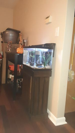 10 gallon fish tank with stand for Sale in Trenton, NJ