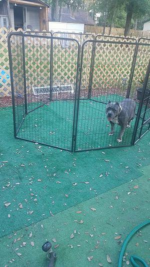 8 panel playpen/kennel w/ walk in door for Sale in Bloomingdale, GA