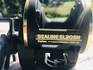 Daiwa Sealine SL20SH Conventional Reel Excellent Condition for Sale in Chino, CA