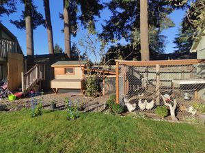Chicken coop with 14 chickens for Sale in Vancouver, WA