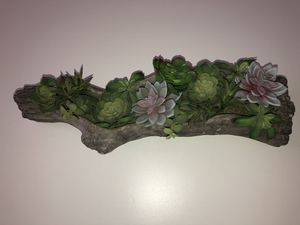 Artificial log succulent plant for Sale in Portland, OR