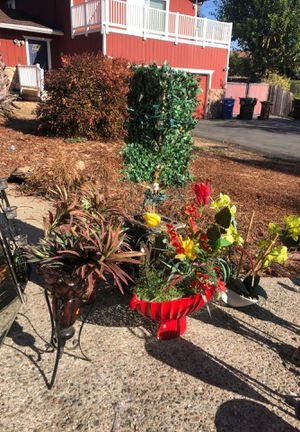 Fake Plant Vases for Sale in Concord, CA