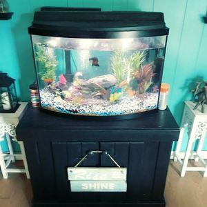 38 gallon bowfront aquarium with stand and accesories for Sale in Norfolk, VA