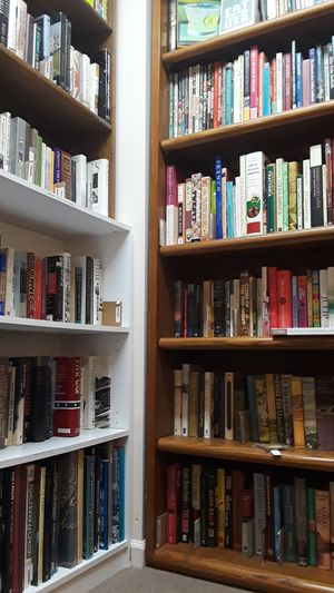 reading - books old & NEW literature poetry bestsellers fiction nonfiction for Sale in Cleveland, OH