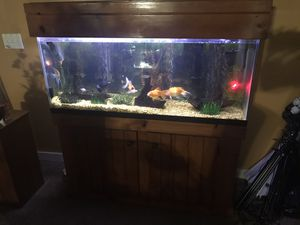 Fish tank 55 gallons for Sale in Winter Haven, FL