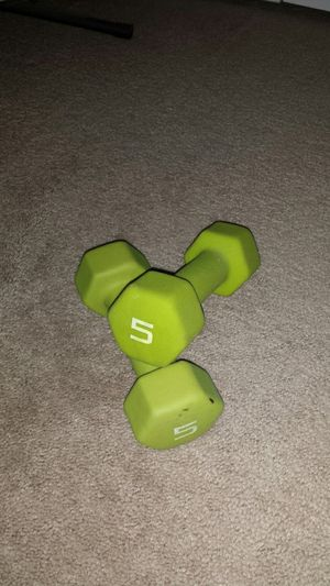 Weights for Sale in Wesley Chapel, FL