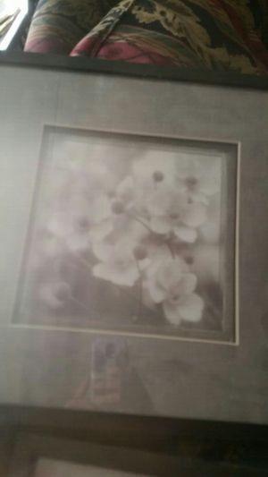 Floral photos for Sale in Alexandria, LA