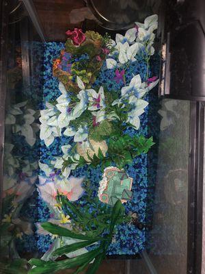 10 gallon fish tank set up for Sale in Gilbert, AZ