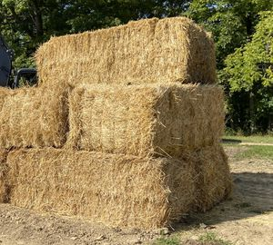 Straw bales for Sale in Brunswick, OH