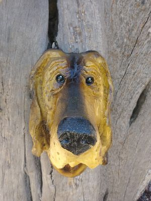 Dog Wall Hanger Wood Carving for Sale in Payson, AZ