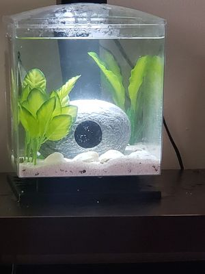 1.5 gallon Cube floating starter kit Fish aquarium for Sale in Gahanna, OH