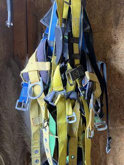 Harness for Sale in Dallas,  TX