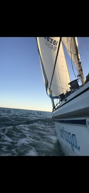 1981 Catalina 27 sailboat for Sale in Dana Point, CA