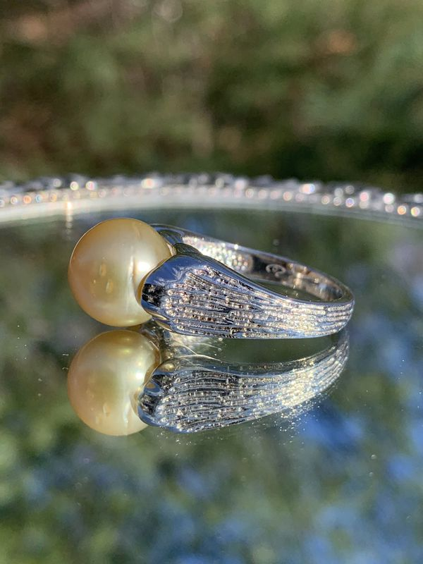 Large 11.5mm South Sea Peal Sterling Silver Ring