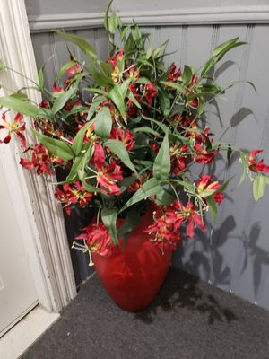 Large potted flowers for Sale in Fall River, MA