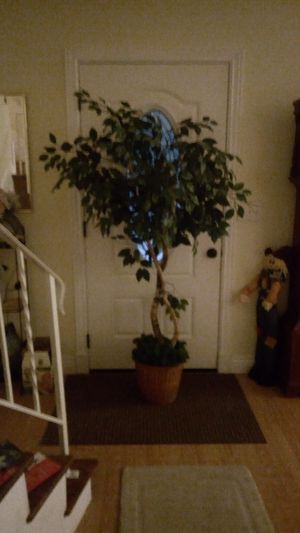 Artificial tree for Sale in Sheffield Lake, OH
