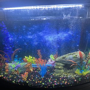 36 Gallon Fish Tank for Sale in Poinciana, FL