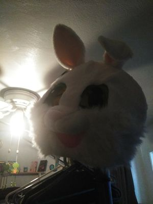 I have Easter bunny costume $25 for Sale in Norfolk, VA