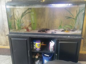 Two for one aquariums for Sale in Oklahoma City, OK