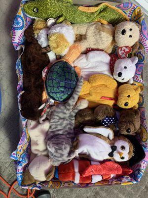 TY Beanie Babies- bundle for Sale in Seattle, WA