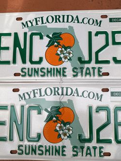 License Plates- Never Been Used- Only for Display for Sale in Weston,  FL