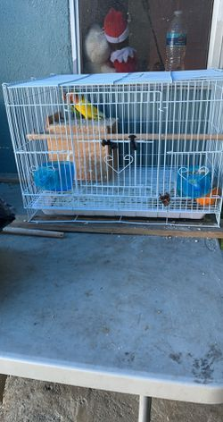 Bird Cage for Sale in Azusa,  CA
